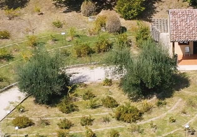 CAMS - Orto Botanico