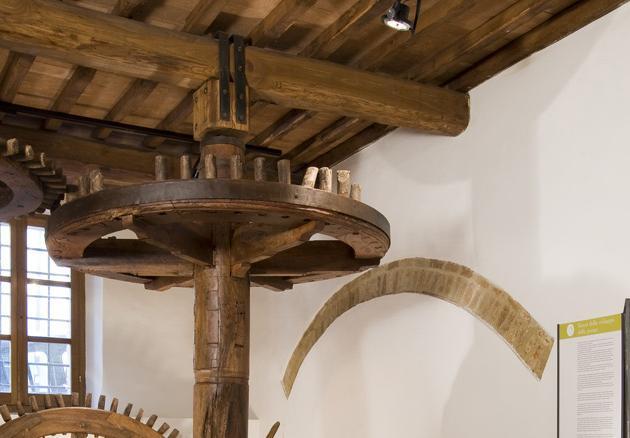 MOO Museo dell'Olivo e dell'Olio